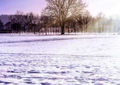 Landscape oesterreich-